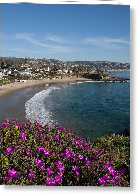 Sandstone Bluffs Greeting Cards - View of Laguna Beach Greeting Card by Cliff Wassmann