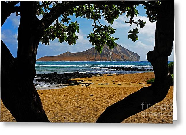 Surf Silhouette Greeting Cards - View of  Manana or Rabbit Island Greeting Card by Cheryl Young