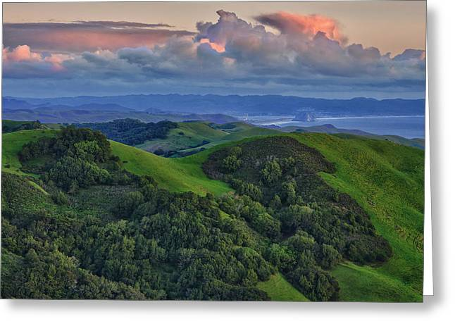 Hwy 46 Greeting Cards - View of Morro Bay Greeting Card by Beth Sargent