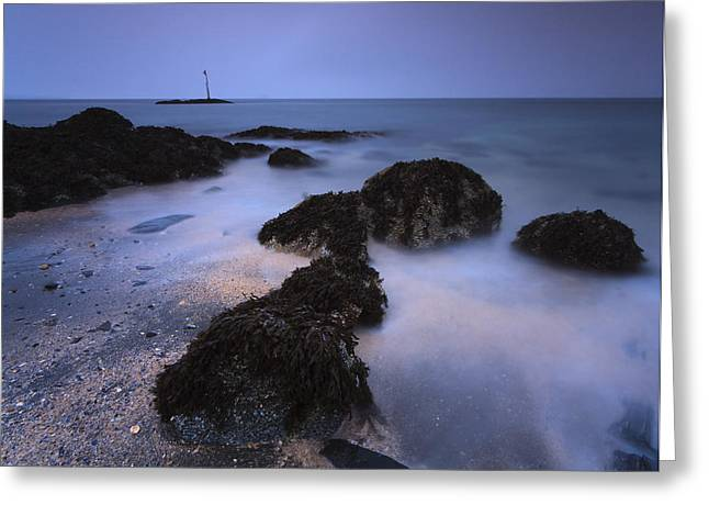 Beach Photos Greeting Cards - View Of Petroglyph Beach, At Dusk In Greeting Card by Quentin Smith