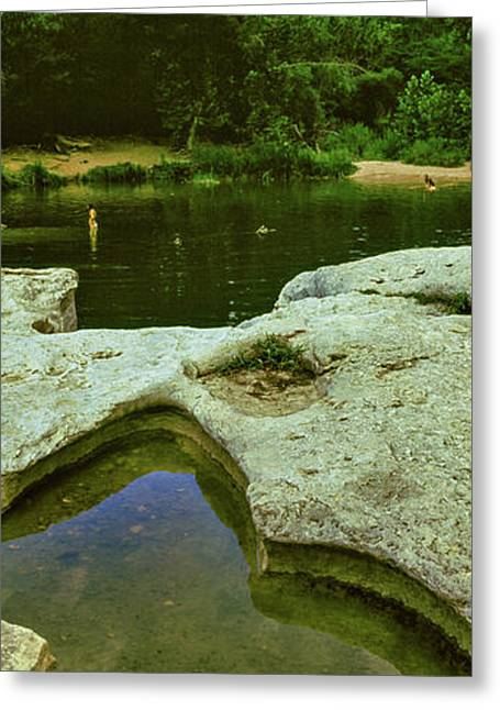 View Of Puddle At Lakeside, Mckinney Greeting Card by Panoramic Images