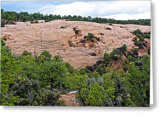 View Of Rock Dome Surface From Sandal Trail Across The Canyon In Navajo National Monument-arizona Greeting Card by Ruth Hager
