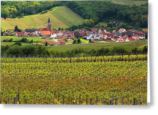 Wine Scene Greeting Cards - View of Rodern From the Vineyards of Alsace Greeting Card by Greg Matchick