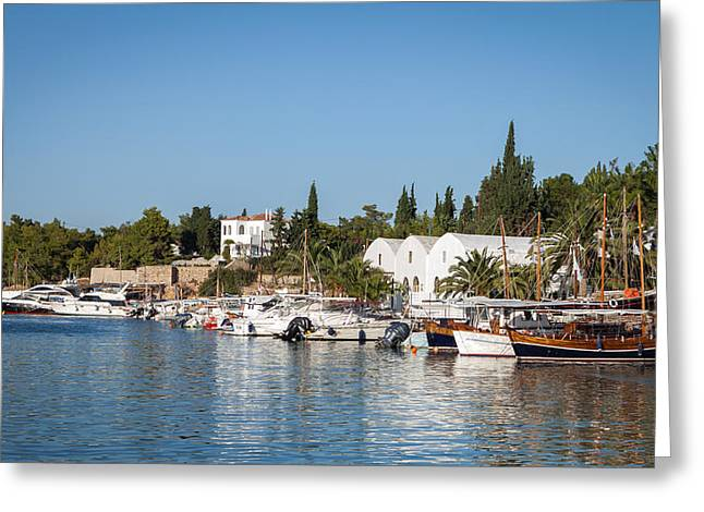 Habor Greeting Cards - View of Spetses harbour Greeting Card by Paul Cowan