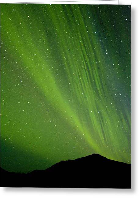Light And Dark Greeting Cards - View Of The Aurora Borealis Dancing Greeting Card by Carl Johnson