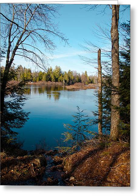 Moose River View From The Lock And Dam Trail  Greeting Card by David Patterson