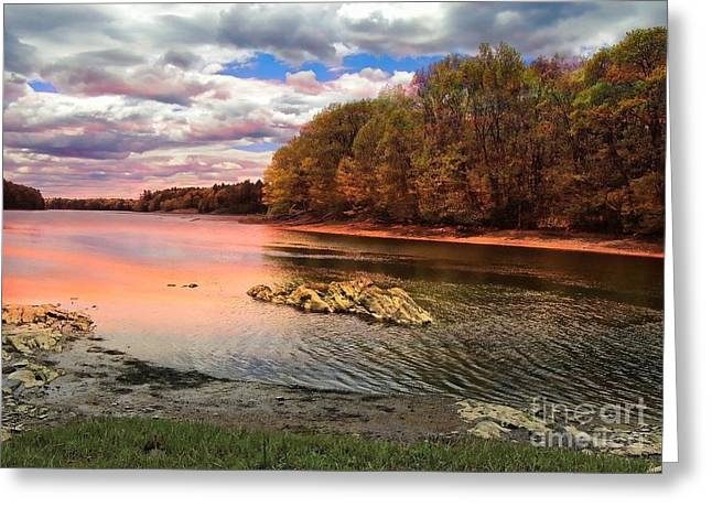 Woodland Scenes Greeting Cards - View Of The Salmon River Greeting Card by Marcia Lee Jones