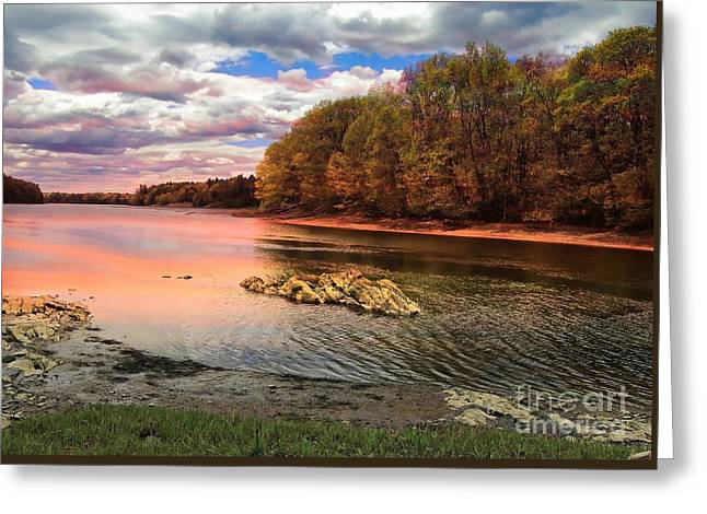 Snow Scene Landscape Greeting Cards - View Of The Salmon River Greeting Card by Marcia Lee Jones