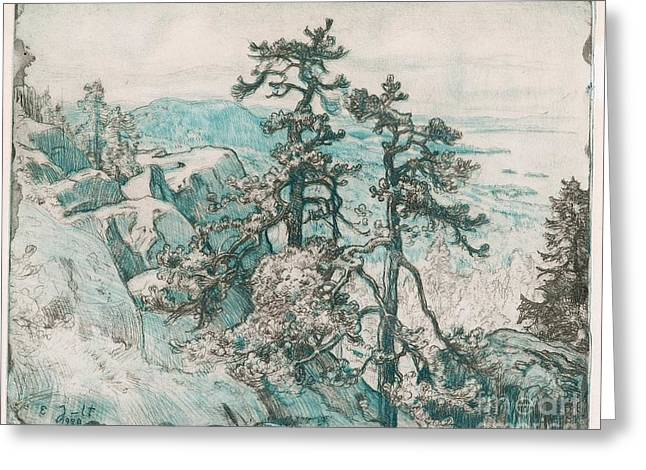 Oslo Greeting Cards - View Over Koli Greeting Card by Celestial Images