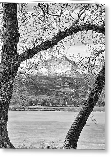 Nature Greeting Cards - View Through The Trees To Longs Peak BW Greeting Card by James BO  Insogna