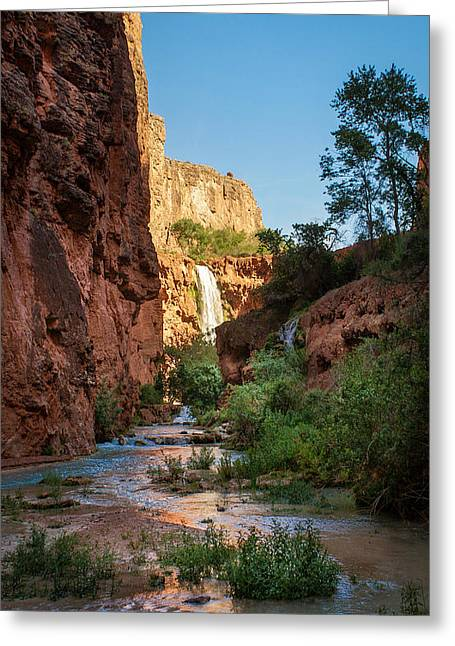 Forest Greeting Cards - View Towards Mooney Falls Greeting Card by Michael J Bauer