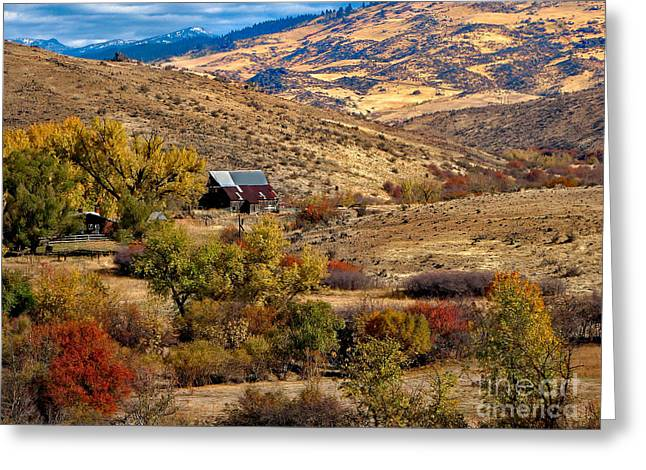 Viewing the Old Barn Greeting Card by Robert Bales