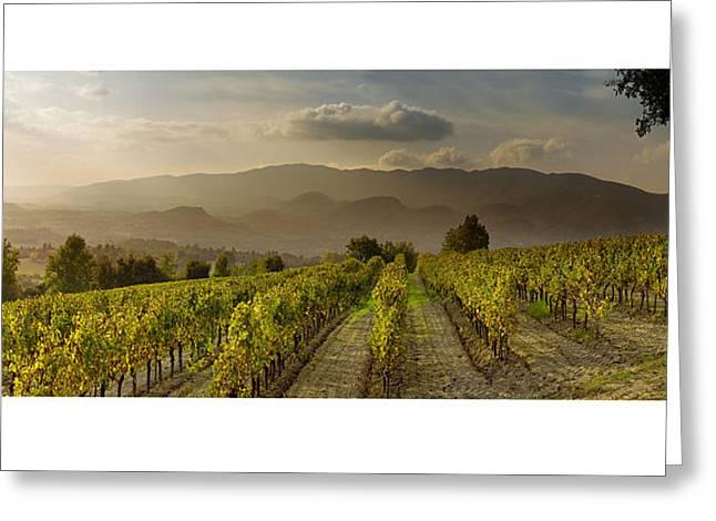 Vineyards Pyrography Greeting Cards - Vignes en Luberon Greeting Card by Gilles Lougassi