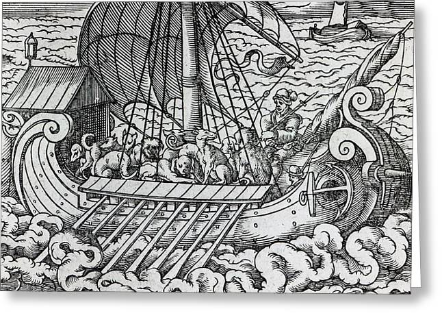 Ships Drawings Greeting Cards - Viking Ship Greeting Card by German School