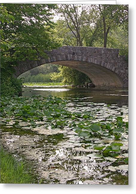 Natural Focal Point Photography Greeting Cards - Vilas Bridge in Madison Wisconsin Greeting Card by Natural Focal Point Photography