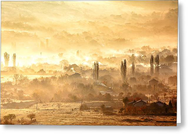 Rural Landscapes Greeting Cards - Village of Gold Greeting Card by Evgeni Dinev