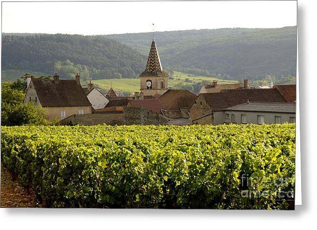 Village of Monthelie. Burgundy. France Greeting Card by BERNARD JAUBERT