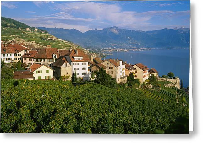 Lake Geneva Greeting Cards - Village Rivaz Between Vineyards & Mts Greeting Card by Panoramic Images