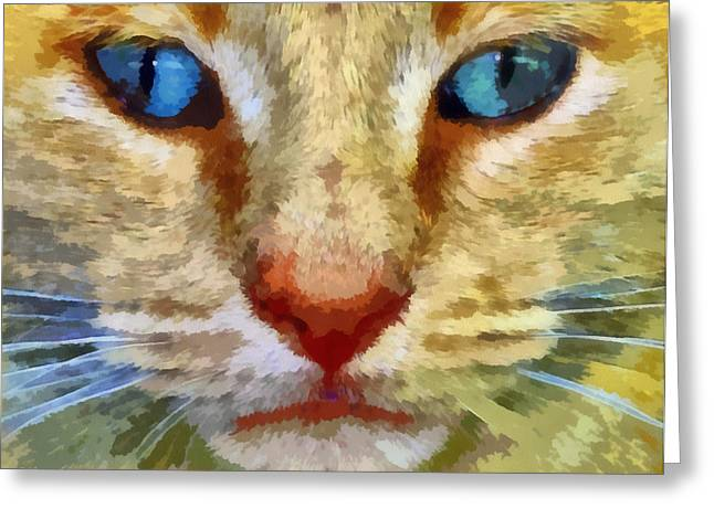 Vincent Greeting Card by Michelle Calkins
