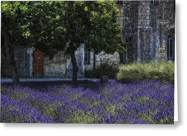 Saint-remy De Provence Greeting Cards - Vincents garden Greeting Card by Joachim G Pinkawa