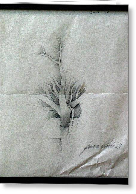 Parable Drawings Greeting Cards - Vine and Branches A 1969 Greeting Card by Glenn Bautista
