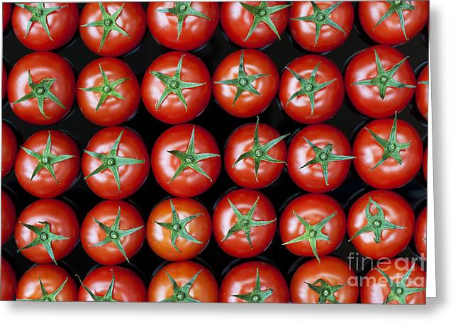 Red Vines Greeting Cards - Vine Tomato Pattern Greeting Card by Tim Gainey