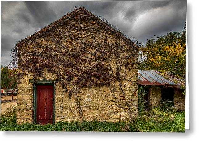 Exterior Wall Greeting Cards - Vines And Brick Greeting Card by Paul Freidlund