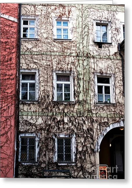 Red Buildings Greeting Cards - Vines in Prague Greeting Card by John Rizzuto