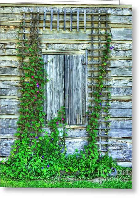 Rural Indiana Photographs Greeting Cards - Vines Of Metamora Greeting Card by Mel Steinhauer