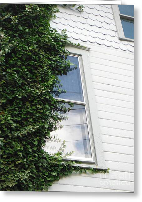 Take Over Greeting Cards - Vines On An Old Dublin House Greeting Card by Paddy Shaffer