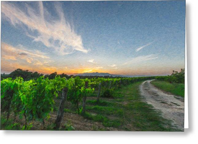 Gravel Road Paintings Greeting Cards - Vines Tuscany Itl4280 Greeting Card by Dean Wittle