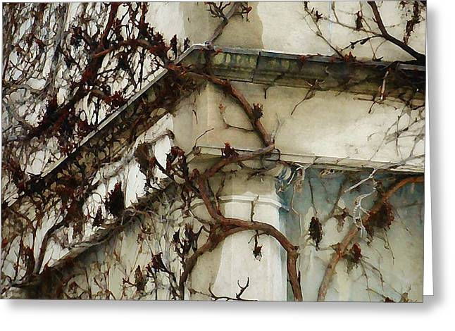 Ledge Mixed Media Greeting Cards - Vines Greeting Card by Victoria Fischer