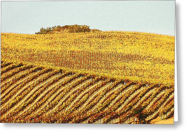 California Vineyard Greeting Cards - Vineyard Abstract Greeting Card by Art Block Collections