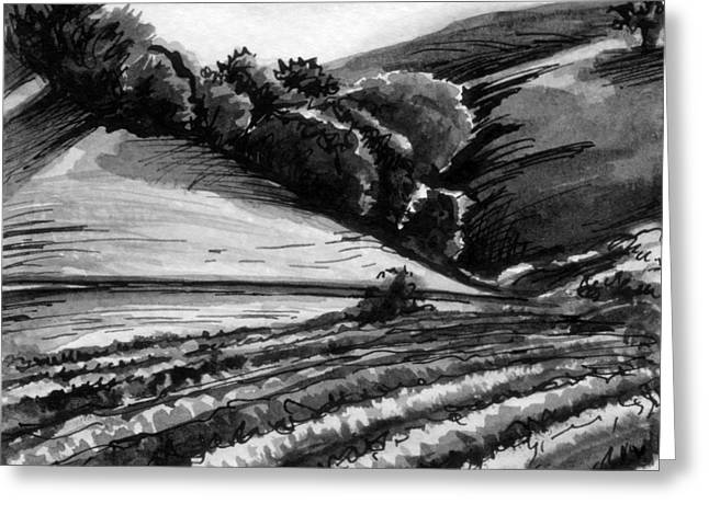 California Vineyard Drawings Greeting Cards - Vineyard Greeting Card by Allison Rogers