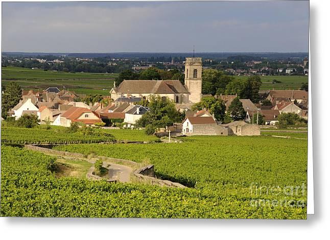 Vineyard and village of Pommard. Cote d'Or. Route des grands crus. Burgundy. France. Europe Greeting Card by BERNARD JAUBERT