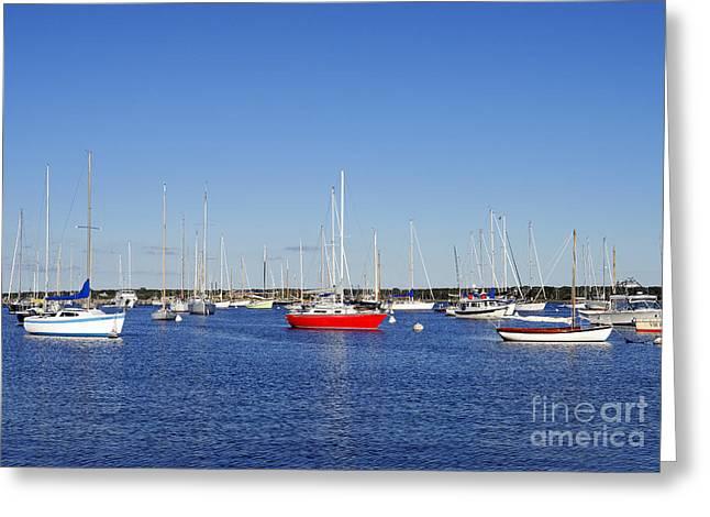 Vineyard Haven Greeting Cards - Vineyard Haven Harbor Greeting Card by John Greim