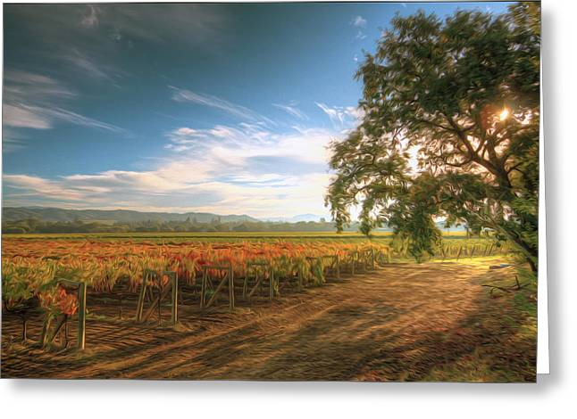 Viticulture Paintings Greeting Cards - Vineyard in Fall Greeting Card by Lanjee Chee