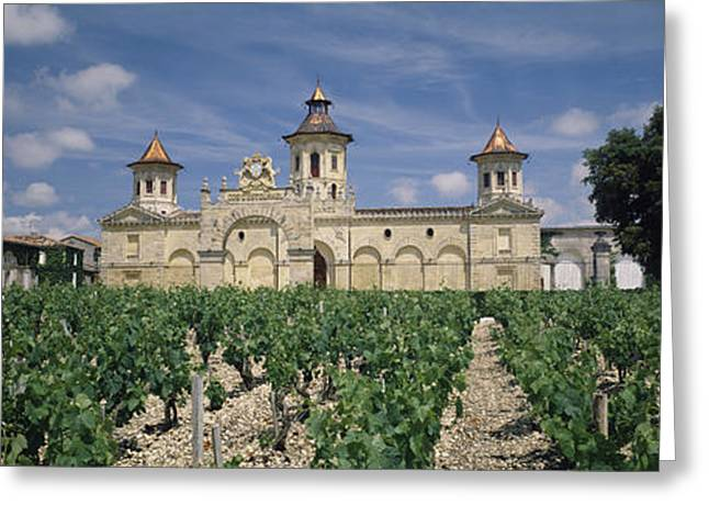 Chateau Greeting Cards - Vineyard In Front Of A Castle, Chateau Greeting Card by Panoramic Images