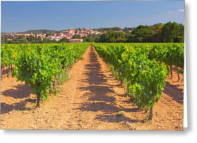 Provence Village Greeting Cards - Vineyard in Provence Greeting Card by Jaroslav Frank