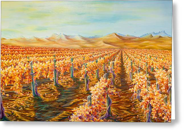 Pinot Drawings Greeting Cards - Vineyard Greeting Card by Josh Long