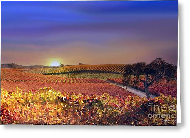 Fall Vineyard Greeting Cards - Vineyard Light Greeting Card by Stephanie Laird