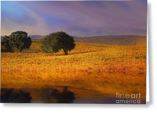 Zinfandel Greeting Cards - Vineyard Magic Greeting Card by Stephanie Laird