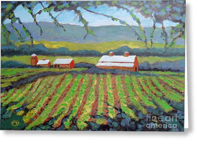 Calistoga Paintings Greeting Cards - Vineyard View Greeting Card by Kip Decker