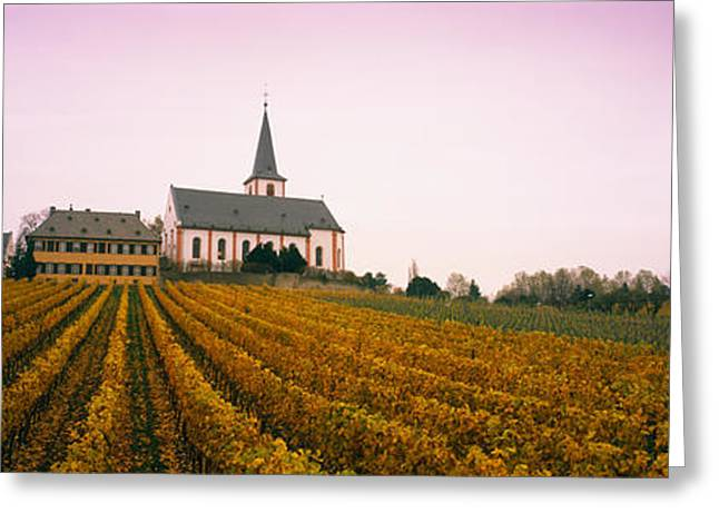 Vineyard Landscape Greeting Cards - Vineyard With A Church Greeting Card by Panoramic Images