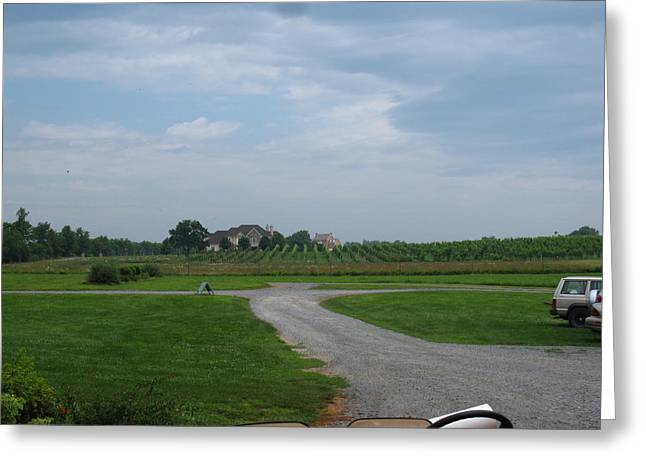 Bottle Photographs Greeting Cards - Vineyards in VA - 121224 Greeting Card by DC Photographer
