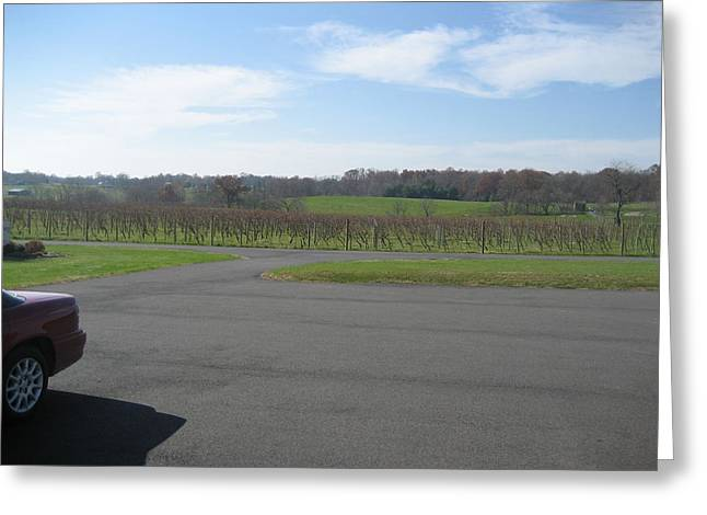 Vineyards In Va - 121230 Greeting Card by DC Photographer