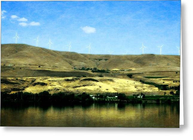 Grapevines Digital Art Greeting Cards - Vineyards on the Columbia River Greeting Card by Michelle Calkins