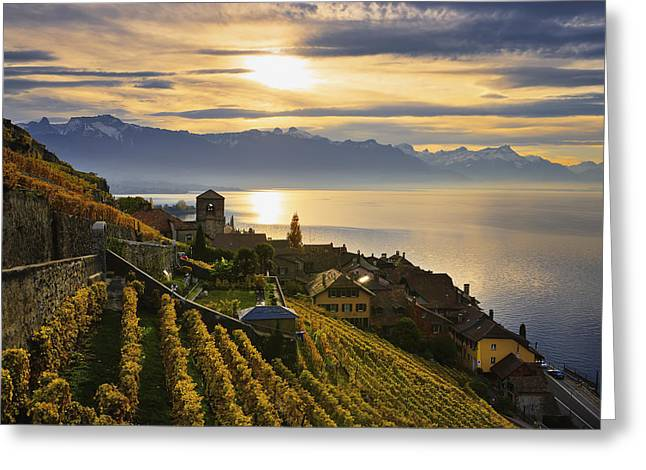 Buildings Reflecting In Water Greeting Cards - Vineyards Saint-saphorin, Lavaux Greeting Card by Yves Marcoux