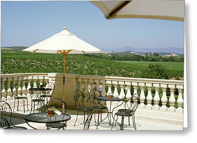 Winery Photography Greeting Cards - Vineyards Terrace At Winery Napa Valley Greeting Card by Panoramic Images