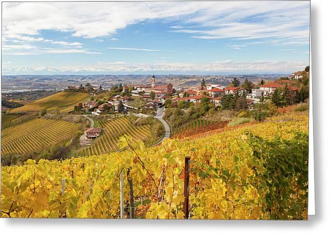 Vineyards, Treiso, Near Alba, Langhe Greeting Card by Peter Adams